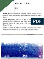 Apicultura_Manejo