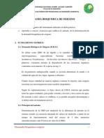 Informe de DBO