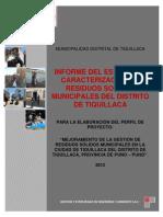 Informe de Tiquillaca Final