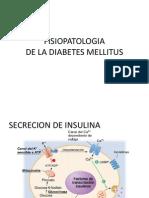 Fisiopatologia Dm