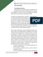 Informe de Practicas Profesionales 2010