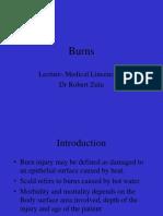 Burns - Principles