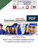 Mini MBA 2013