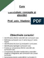 Curriculum_concepte Si Abordari