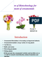 application of biotechnology for improvement of ornamental crops
