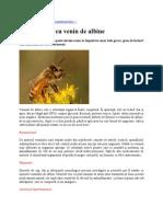Apiterapie Remedii Naturiste - Veninul de Albine
