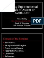 Burning Environmental Issues of Assam or North-East