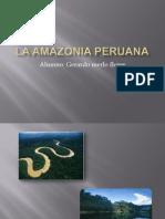 La Amazonia Peruana Gerardo Merlo
