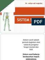 Anatomi Neuron