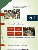 Zoología, Estudio de los animales para el