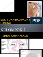 Sakit Dan Bau Pada Mulut & Hidung