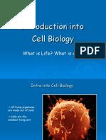Cell Bio 1