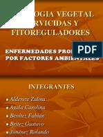 PATOLOGIA VEGETAL HERVICIDAS Y FITOREGULADORES.ppt