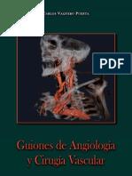 Guiones Angiologia (Libro)