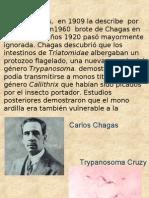 Cruzy.pres