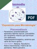 Plasmodium.pres