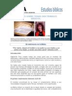 ColeccionEstudiosdoctrinalesbasicosAlejandraMontamatNro28