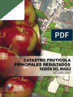 Catastro VIIRegion 2007