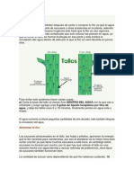 phf.pdf