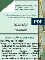 A educação ambiental e a formação de professores em licenciaturas