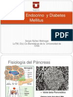 Copia de Diabetes Mellitus 2012