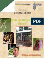 Relacion-sustentabilidad