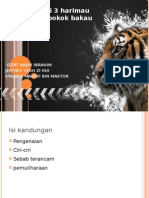 Harimau Serbia