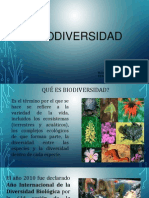 6.- Biodiversidad