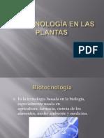 Biotecnología en las plantas