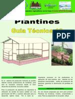 10 Guia en Produccion Plantines