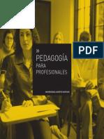 Pedagogia para Profesionales - U Alberto Hurtado.pdf