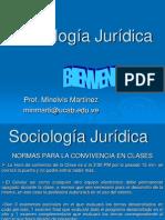 Sociología Jurídica introduccion y tema 1