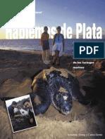 TroengHablemosPlata.pdf