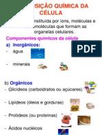 #Composição Quimica da Celula