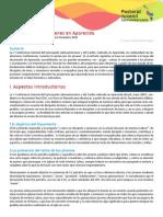 La_opcion_por_los_jovenes_en_Aparecida-1.pdf