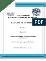 TAREA 6 Matriz No Cuadrad Invertible y Frobenius