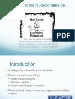 Requerimientos Clostridium
