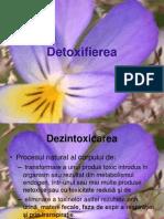 02 detoxifierea