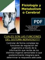 SEMINARIO I Fisiologia y Metabolismo Cerebral