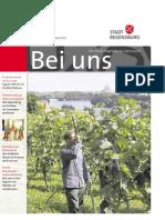 Stadt Regensburg - Bei uns, Ausgabe 2013 / 5