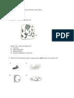 Biology Exam Paper 1