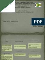 Mapa Conceptual Auge y Caida de Marcos Perex Jimenez - Copia Prima