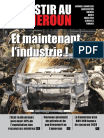 Investir au Cameroun 8.pdf