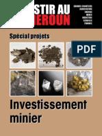 Investir au Cameroun 7.pdf