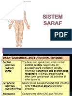 Nervous System [Dr. Pipiet W.]