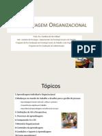 Aprendizagem Organizacional - Camara Legislativa Do DF - 06 de Junho 2011_v2