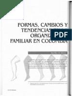 Formas Cambios y Tendencias en La Organizacion Familiar en Colombia