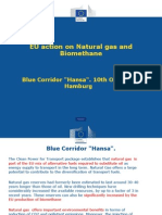 Blue Corridor NGV Rally 2013 - EU Action on Natural Gas and Biomethane