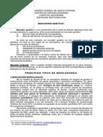 Marc Adores Molecular Es 2