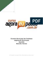 PDF AEP GMF LegislacaoMunicipal Apostila MarcilioTavora
